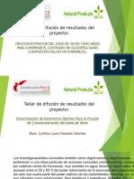 Taller de difusión de resultados del proyecto CYNTHIA.pptx
