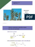 17 clase quimica organica.en.es.pdf