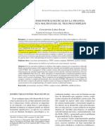 López Soler (2008.RPPC). Reacciones Postraumáticas en La Infancia Maltratada