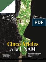 Gaseta UNAM 2018 -06 -07