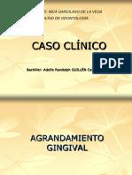 casoclxadultoadolfo-101122150759-phpapp02