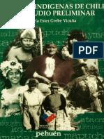 cultura mapuche.pdf