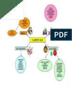 Mappa Concettuale Carnevale