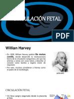 Circulación Fetal...