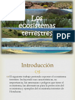 presentacion ecosistema terrestree.pptx
