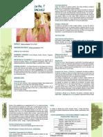 FERNAN-SANCHEZ.pdf