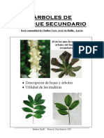 EcuadorTrees.pdf