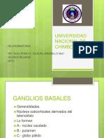 ganglios-basales-160228222324