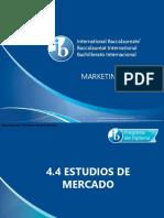 4 4 Estudios de Mercado