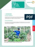 Control Organico y Biologico de Plagas y Enfermedades Del Cafeto