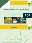 SOLUCIONES ORGANICAS PARA LA ROYA CAFETO.pdf