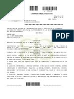 Certificado de Constitución y Gerencia (2)