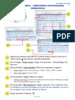 Guia Rapida Sap Mp0030 (Iw37n-Cm01 Reporte Programa Semanal) v 0
