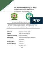EVALUACION PRELIMINAR AMBIENTAL.pdf
