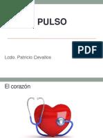 5 pulso.pptx