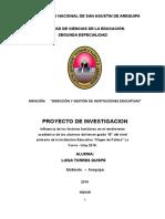 Proyecto de Investigacion 2011sra Luisa