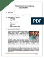Informe de Laboratorio7