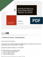 Contratos Publicos e TdC Pedro Melo PLMJ