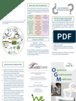 136819833-Organismos-geneticamente-modificados-Folleto-pdf.pdf