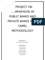 A Com Pars Ion of Private and Public Bank