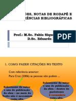 NORMAS CITACOES E REFERENCIAS.ppt