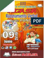 bases_rv_puno_2018.pdf