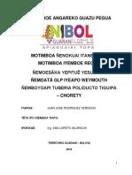 Perfil de Tesina JUAN JOSE Idioma guarani