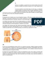 7 enfermedades venerias