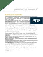 anatomia si fiziologia plamanilor.docx