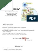 B oxidación.pptx