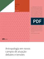 PEREIRA, Alexandre. Práticas culturais juvenis na metrópole.pdf