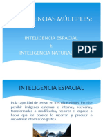 Expo Inteligencias Múltiples