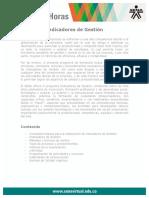indicadores_gestion.pdf