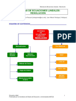 SEL_Resolucion.pdf