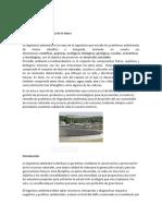 Articulo cientifico Prada.pdf