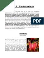 310267202-Tema-III-Plante-Carnivore.docx
