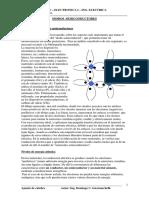 1-2-teoria_diodos