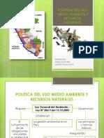 Exposicion de Politica Del Uso Del Medio Ambiente PDF