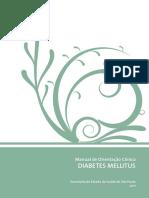 Diabetes Manual Atualizado 2011