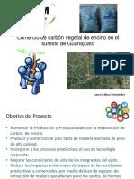 Comercio de carbón vegetal.pptx