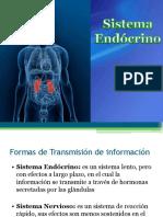 Sistema endcrino_II.pdf