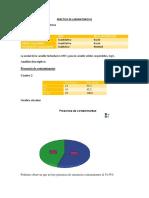 PL1_CASTRO.docx
