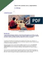 Roles Grupo Operativo. Por