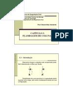 Capitulo5-FlambagememColunas.pdf