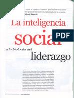 inteligen-1231220544386239-1.pdf