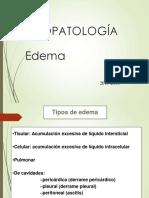 4 1P Edema FP.pdf