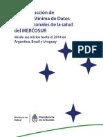 Prof Salud Mercosur