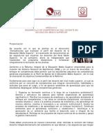 Desarrollo de Competencias Docestes (Modulo 2)