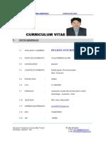 Imprimir Curriculum Juvenal