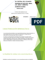 Exposicion caracterización mineralogica.pptx